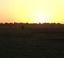 Sun Set of the South East by Dunstan