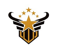 star emblem victory vector logo by mydigitall