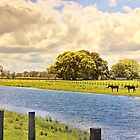Peace Like a River by wallarooimages