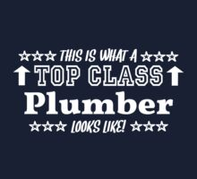 This Is What A Top Class PLUMBER Looks Like! by Chimpocalypse