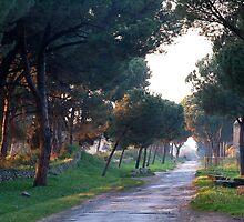 Last sunbeams on the Via Appia Antica by Arie Koene