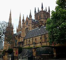 St Mary's Cathedral Sydney NSW Australia by Sandra  Sengstock-Miller