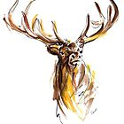 Deer art print, animal ideas for sale by Mariusz Szmerdt