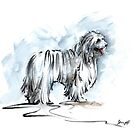 Dogs ideas watercolor painting, komondor home decor by Mariusz Szmerdt