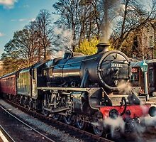 Steam on the Rails by Trevor Kersley