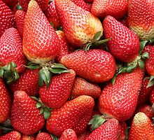 Fresh Strawberries by rhamm