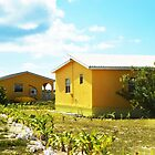 Yellow Houses in Anegda by ChelcieSPorter