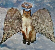 Do Cats Have Guardian Angels? by Jane Neill-Hancock