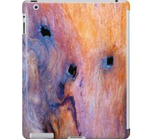 The Driftwood Picasso iPad Case/Skin