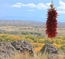 Chilis and Mountains by Denice Breaux