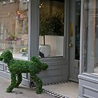 A flower dog. by John (Mike)  Dobson