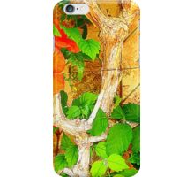 Hibiscus On Withered Wood iPhone Case/Skin
