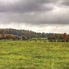 Bottom Hill Farm  by Rich Fletcher