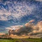 Under Prairie Skies 232912 by Ian McGregor