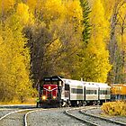 Pend Oreille Valley Area Railroad by Jim Stiles