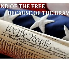 Land of the Free by TNTreasure