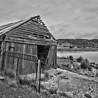 The Old Shack. by Warren  Patten