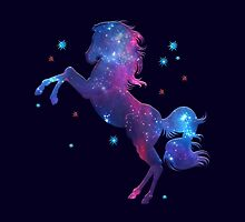 Space Horse, Universe, Kosmos, Galaxy, Star by boom-art