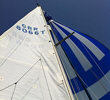 flying the spinnaker by juliecronin