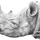 Black Rhino Birthday Card by Lorna Mulligan