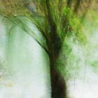 Artscape..........The Tree by Imi Koetz