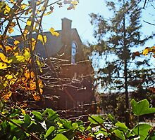 Abandoned House in the Autumn Sunlight by Gilda Axelrod