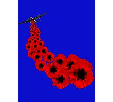 Poppy day Remembrance Photographic Print