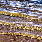 Water Concerto 1 by Danuta Antas