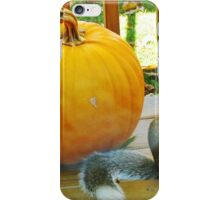 Denizen Of The Lakeshore iPhone Case/Skin