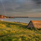 Freshwater rainbows by Rachael Talibart