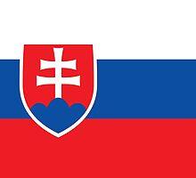Slovakia - Standard by solnoirstudios