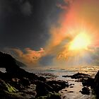 The Inner View ~ Oregon Coast ~ by Charles & Patricia   Harkins ~ Picture Oregon