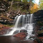 B. Reynolds Falls Under Turning Leaves by Gene Walls