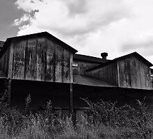 Abandoned Mill by Scott Mitchell