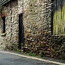 Old Wall, Salcombe, England by fotosic