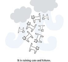 RAINING CATS & KITTENS. by tosojourn