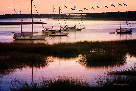 Boats at Anchor~ Evening Tranquility by SummerJade
