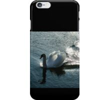 Silver Wake - the Pompous Territorial Swan iPhone Case/Skin