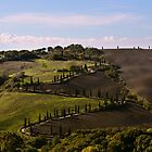 Etruscan Road, La Foce, Val D'Orcia, Tuscany, Italy by Andrew Jones