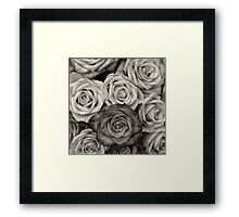 Shaded roses  Framed Print