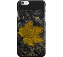 Amber Yellow Sunshine - Maple Leaf and Pebbles iPhone Case/Skin