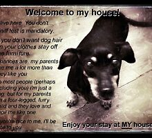 Dachshund - My house not yours! by ALIANATOR