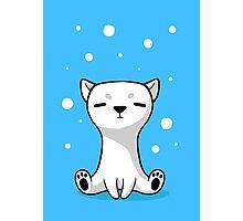 Polar Cub Photographic Print