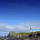 Oregon - Yaquina Head Lighthouse by Robert Baker