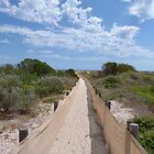 Are We Nearly There? Conserving the sand-hills. Semaphore, Adelaide. by Rita Blom