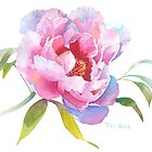 British Columbia Peony by Pat Yager