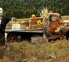 It's a Scarecrow Harvest.....! by Kricket-Kountry