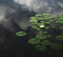 Heavenly Water by RVogler