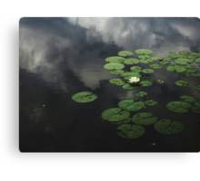 Heavenly Water Canvas Print