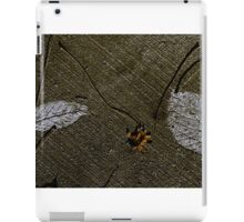 Those Who Have Fallen Before Us iPad Case/Skin